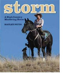 Storm: A High Country Mustering Horse
