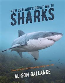 New Zealand's Great White Sharks
