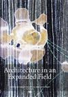 Architecture in an Expanded Field