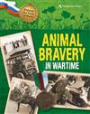 Beyond The Call Of Duty Animal Bravery In Wartime