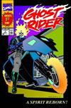 Ghost Rider: Vol. 1: Danny Ketch Classic