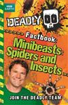 Minibeasts, Spiders and Insects