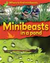 Minibeasts in a Pond