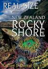 Real-size Guide to the NZ Rocky Shore