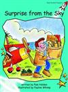 Surprise from the Sky: Fluency: Level 2