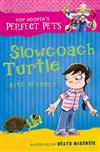 Slowcoach Turtle