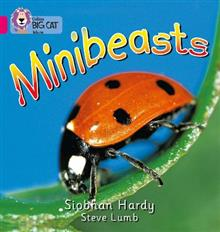 Minibeasts: Band 01a/Pink a