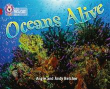 Oceans Alive: Band 14/Ruby