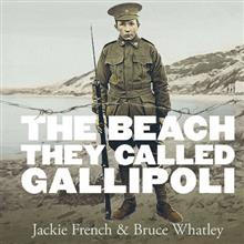 The Beach They Called Gallipoli