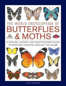Butterflies & Moths, The World Encyclopedia of: A natural history and identification guide to over 565 varieties around the globe