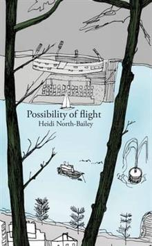 Possibility of Flight
