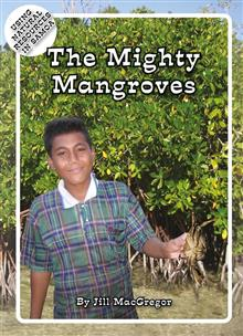 The Mighty Mangroves