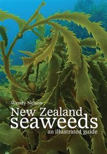 New Zealand Seaweeds: An Illustrated Guide: 2020