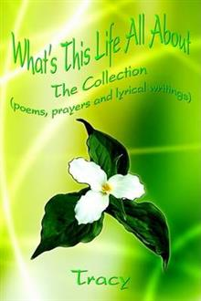 What's This Life All about: the Collection (Poems, Prayers and Lyrical Writings)