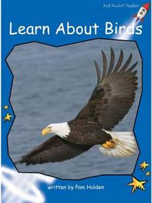 Red Rocket Readers: Early Level 3 Non-Fiction Set C: Learn About Birds
