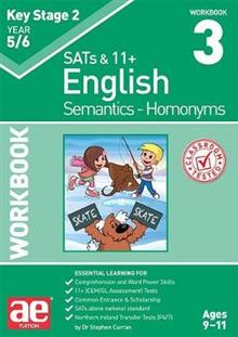 KS2 Semantics Year 5/6 Workbook 3 - Homonyms