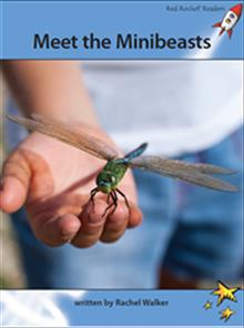 Red Rocket Readers: Advanced Fluency 4 Non-Fiction Set A: Meet the Minibeasts