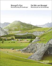 Bruegel's Eye: Reconstructing the Landscape