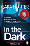 In The Dark: from the Sunday Times bestselling author of Close to Home