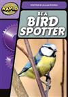 Rapid Phonics Step 3: Be a Bird Spotter (Non-fiction)
