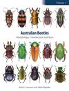 Australian Beetles Volume 1: Morphology, Classification and Keys