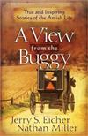 A View from the Buggy: True and Inspiring Stories of the Amish Life