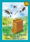 Pi / Bees Level 18