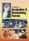 Incubation and Handraising Parrots