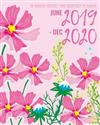 2019-2020 June 2019 - December 2020: 19 Month Planner Weekly and Monthly: Daily Calendar Schedule & Academic Journal Organizer Graphic Pink Floral Cover