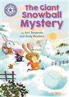 Reading Champion: The Giant Snowball Mystery: Independent Reading Purple 8