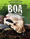 Boa Constrictor: Killer King of the Jungle