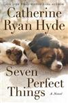 Seven Perfect Things: A Novel