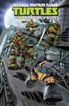 Teenage Mutant Ninja Turtles New Animated Adventures Volume 3