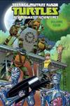 Teenage Mutant Ninja Turtles New Animated Adventures Volume 4