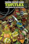Teenage Mutant Ninja Turtles New Animated Adventures Omnibus Volume 1