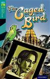 Oxford Reading Tree TreeTops Graphic Novels: Level 16: The Caged Bird