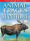 Animal Tracks of Manitoba