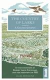 The Country of Larks: A Chiltern Journey: In the footsteps of Robert Louis Stevenson and the footprint of HS2