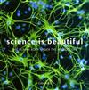 Science is Beautiful: The Human Body: Under the Microscope