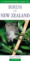 Photographic Guide to Birds of New Zealand