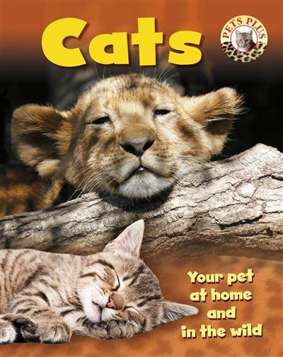 Pets Plus: Cats