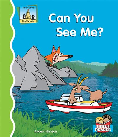 Can You See Me? eBook