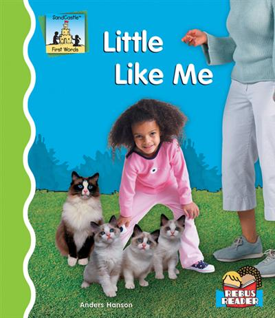Little Like Me eBook