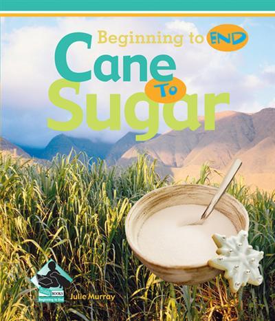 Cane to Sugar eBook