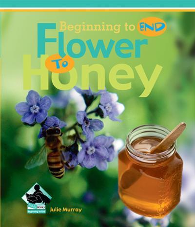 Flower to Honey eBook
