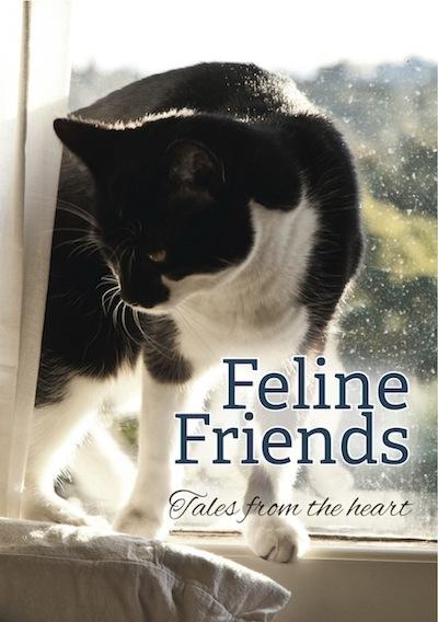 Feline Friends: Tales from the heart