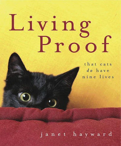 Living Proof: That cats do have nine lives