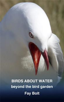 Birds about Water: Beyond the Bird Garden
