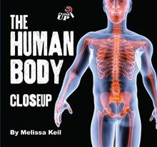 Human Body CloseUp